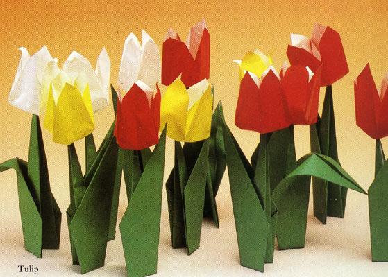 Цветы из проволоки стоимость цветов и
